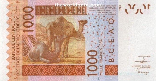 1000 Francs CFA the back is Camels