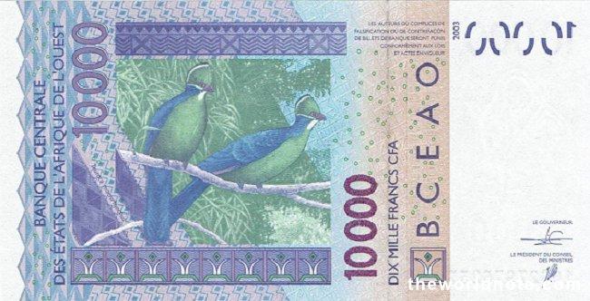 10000 Francs CFA the back is Birds (Tauroco macrorhynchus)