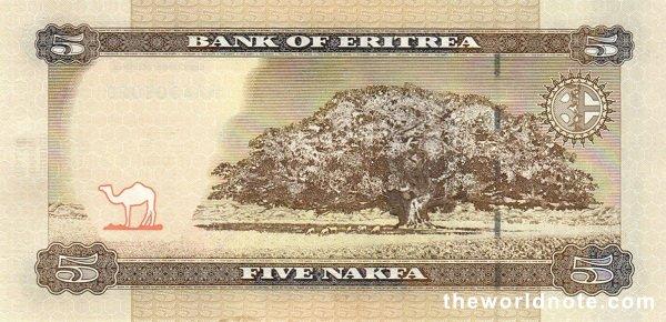 5 Eritrean nakfa the back is Jacaranda tree