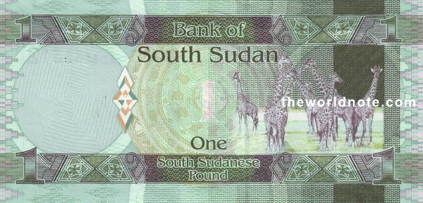 1 South Sudanese pound the back is Giraffes
