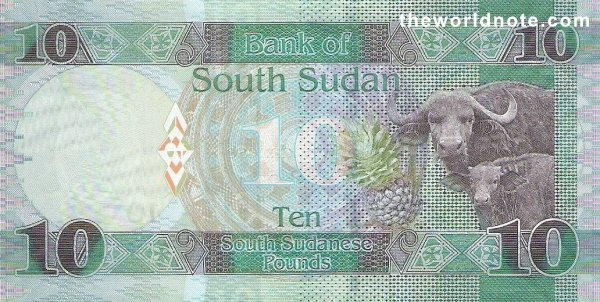 10 South Sudanese pound the back is Buffalos, pineapple